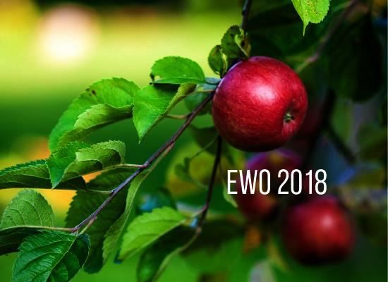 Ewo 2018